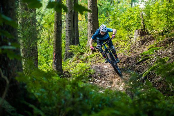 Biker fährt im Wald einen Weg vom Hügel hinab