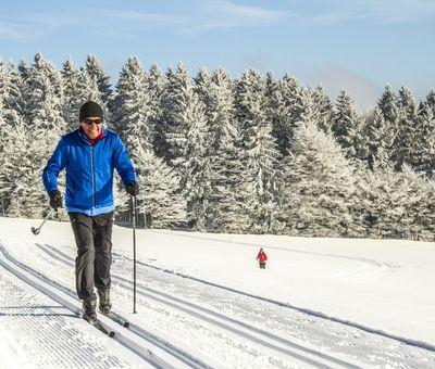 Ein Langläufer auf eine verschneiten Loipe, im Hintergrund Wald