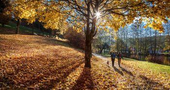Zwei Wanderer mit Hund gehen durch buntes Herbstlaub am See