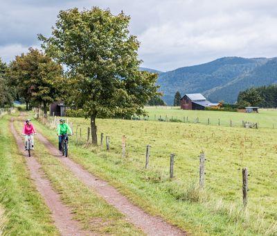 Ein Paar fährt mit E-Bikes über einen Feldweg