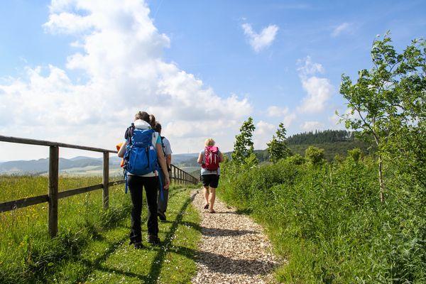 Wanderer auf einem Weg mit Holzspähnen, Bild von hinten