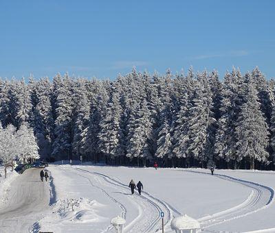 Gespurte Loipen im Schnee mit einem Wald im Hintergrund. Einige Wanderer sind unterwegs.