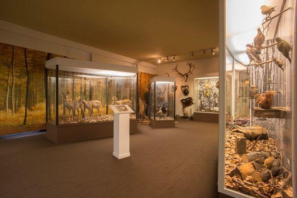 Westfälisches Schieferbergbau - und Heimatmuseum