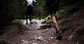 Zwei Personen laufen durch den Wald