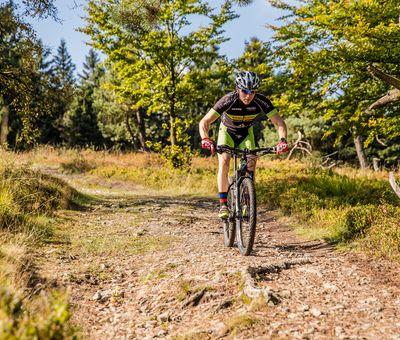 Biker fährt über einen verwurzelten und steinigen Weg