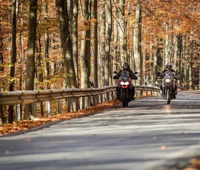 Zwei Motorradfahrer umgeben vom Herbstwald