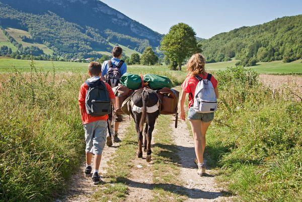 Drei Personen wandern mit Eseln durch die Natur. Die Esel tragen Gepäck.