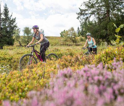Zwei E-Mountainbiker fahren hintereinander durch eine Wiesenlandschaft