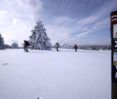 Schneeschuhwanderung bei viel Schnee und Sonne, im Vordergrund eine Holzsäule mit Beschilderung