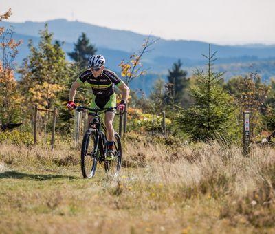 Biker fährt einen Feldweg durch die Heidelandschaft